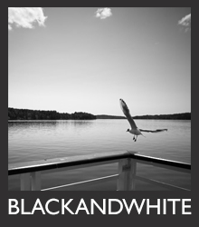 gallery black and white